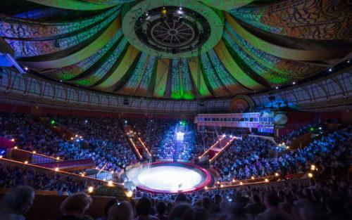 Цирк. USA Ceiling Group
