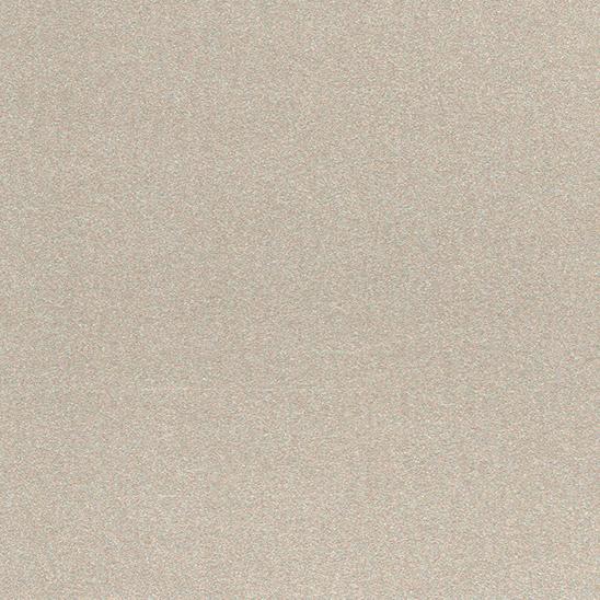 Цвет реечного потолка: 252 1, металлик